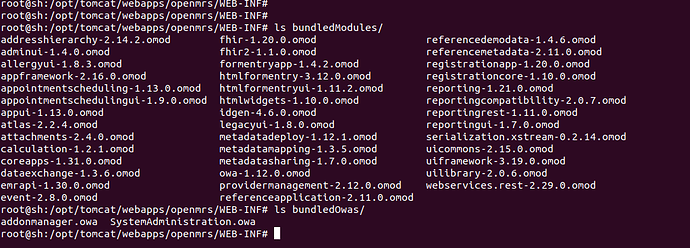 openmrs-modules-owa
